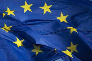 Ο επίμονος κάβουρας. Ευρωπαϊκή Ένωση 2014-2019: πίσω και μπροστά